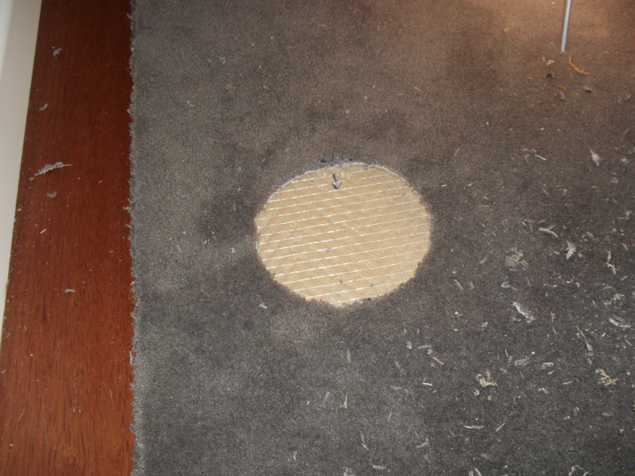 Carpet Cleaning Melbourne Stain Removal Rug Repairs Tile And Grout