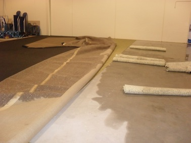 Water Damaged Carpet Brisbane Gold Coast Ipswich